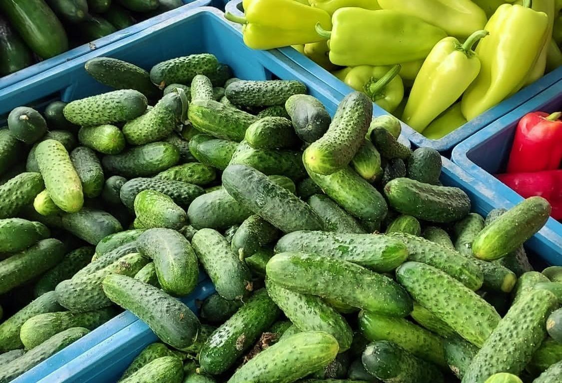 V úterý 20. 7. a ve čtvrtek 22. 7. bude opět Kubáň plná čerstvé zeleniny a letního ovoce, budou například i okurky nakládačky.